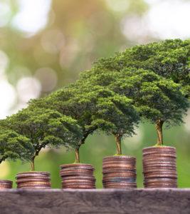 Formations financières pour spécialistes