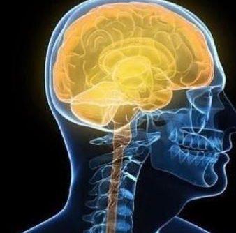 Déchaînez votre cerveau & gérez votre stress