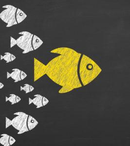 Managing people – veerkrachtig leiderschap in onzekere tijden – VIRTUAL CLASSROOM