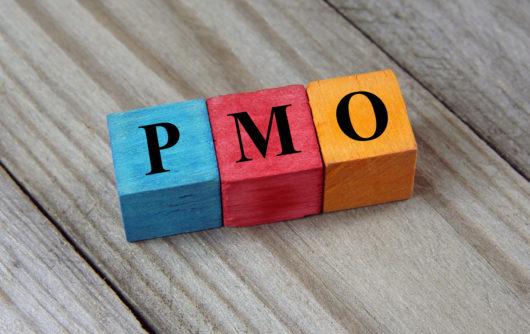 Opzetten van een PMO (Project management office)