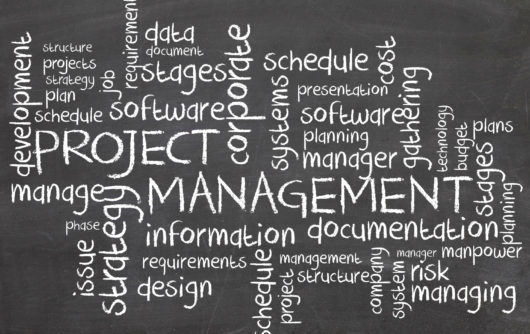 Project management voor project medewerkers